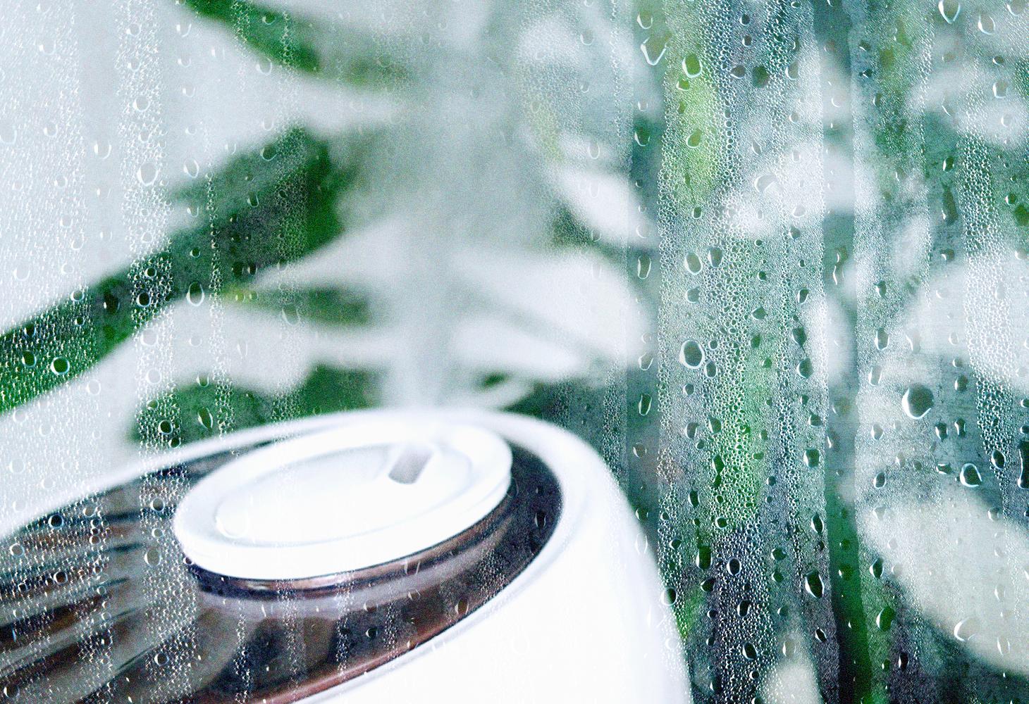 Humidifier_1